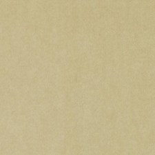 293785 HV16156 281 Sand by Robert Allen