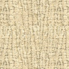 Champagne Solids Decorator Fabric by Kravet