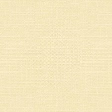 Pearl Solids Decorator Fabric by Kravet