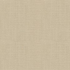 Bone Solids Decorator Fabric by Kravet