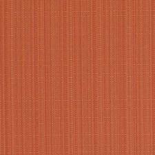 305702 15710 36 Orange by Robert Allen
