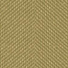 Pesto Chenille Decorator Fabric by Kravet