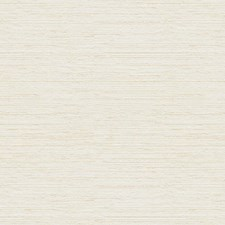 Blanc Texture Decorator Fabric by Kravet