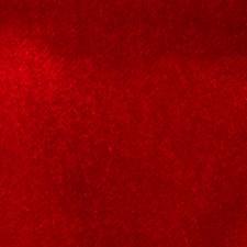Cardinal Solid Decorator Fabric by Fabricut
