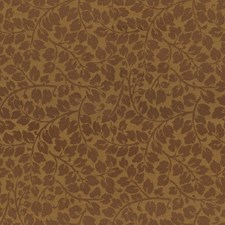 Brown Sugar Botanical Decorator Fabric by Kravet