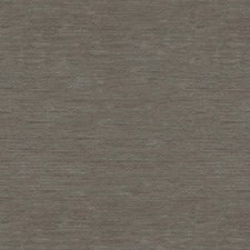 Gentle Grey Solids Decorator Fabric by Kravet