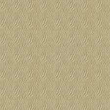 Safari Solid W Decorator Fabric by Kravet