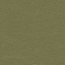 Green Tea Decorator Fabric by Schumacher