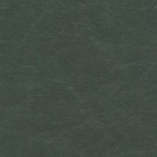 Grass Solid W Decorator Fabric by Kravet