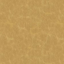 Golden Solid W Decorator Fabric by Kravet