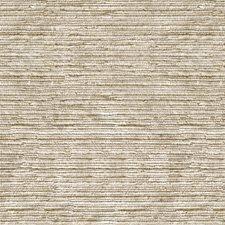 Birch Texture Decorator Fabric by Kravet