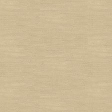 Nomad Solids Decorator Fabric by Kravet