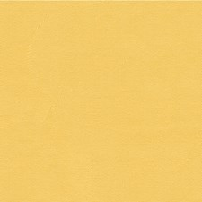 Light Yellow/Yellow Solid Decorator Fabric by Kravet