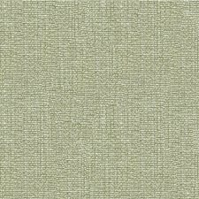 Chamomile Solid Decorator Fabric by Kravet
