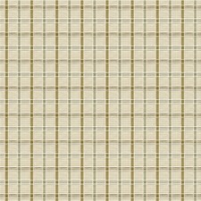 Meadow Check Decorator Fabric by Kravet