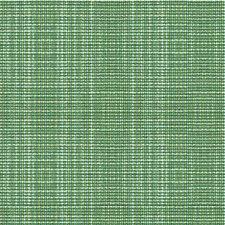 Jungle Solids Decorator Fabric by Kravet