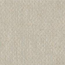 Pumice Texture Decorator Fabric by Kravet