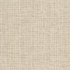 Oyster Solids Decorator Fabric by Kravet
