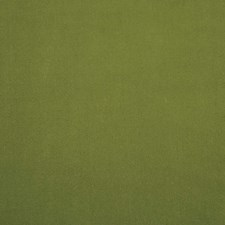 Green Decorator Fabric by Clarence House