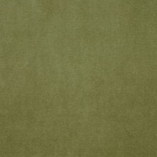 Green Tea Decorator Fabric by Clarence House