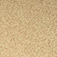 Beige/Neutral Solids Decorator Fabric by Kravet