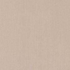 360867 DK61567 13 Tan by Robert Allen