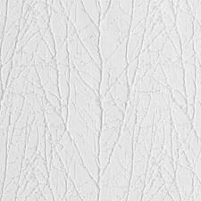 361913 DI61353 81 Snow by Robert Allen