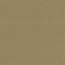 Briarwood Decorator Fabric by Schumacher