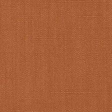 366589 DK61430 231 Apricot by Robert Allen