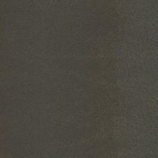 Sable Decorator Fabric by Schumacher