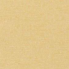 370563 DK61276 576 Marigold by Robert Allen