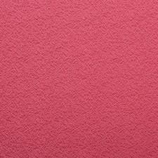 377038 90899 4 Pink by Robert Allen
