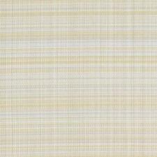 378733 15693 632 Sunflower by Robert Allen