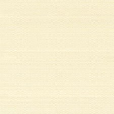 380546 DK61421 66 Yellow by Robert Allen