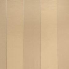 Amber Stripes Decorator Fabric by Fabricut