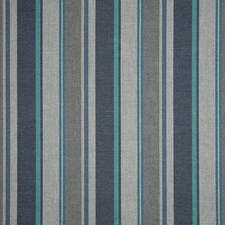 Coast Decorator Fabric by Sunbrella