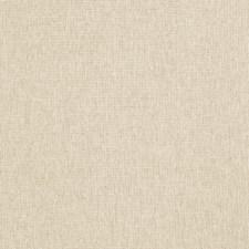 Raffia Texture Plain Decorator Fabric by Fabricut