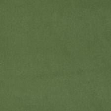 Garden Solid Decorator Fabric by Stroheim
