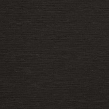 Ebony Solid Decorator Fabric by Trend