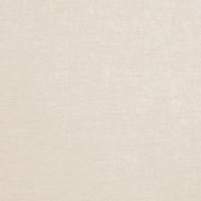 Glacier Solid Decorator Fabric by Trend