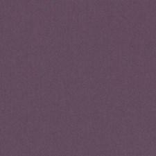 511770 DK61731 119 Grape by Robert Allen
