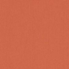 511842 DK61731 35 Tangerine by Robert Allen