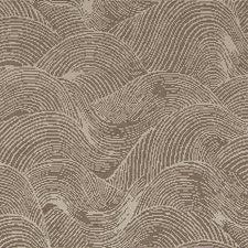 524225 DO61913 178 Driftwood by Robert Allen