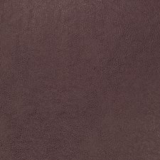 Grape Solid Decorator Fabric by Trend