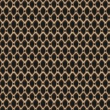 Stone Global Decorator Fabric by Trend
