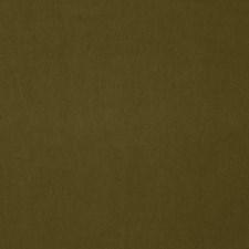 Khaki Solid Decorator Fabric by Stroheim