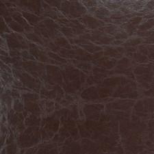 Cedar Solid Decorator Fabric by Fabricut