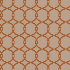 Burnt Orange Embroidery Decorator Fabric by Trend
