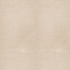 Limestone Global Decorator Fabric by Vervain