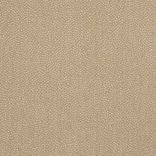 Dew Moss Small Scale Woven Decorator Fabric by Vervain